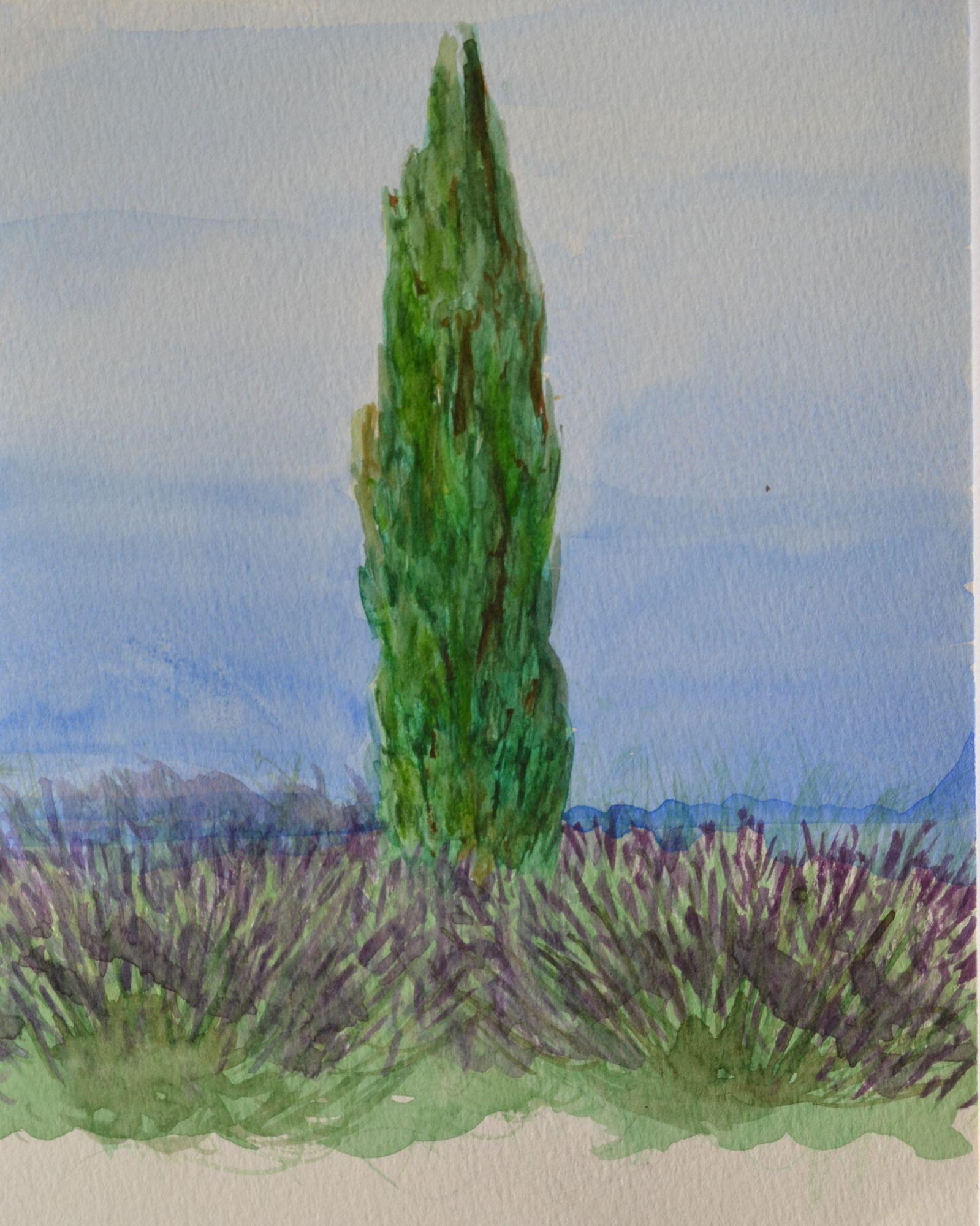 2006 aquarel Cypres