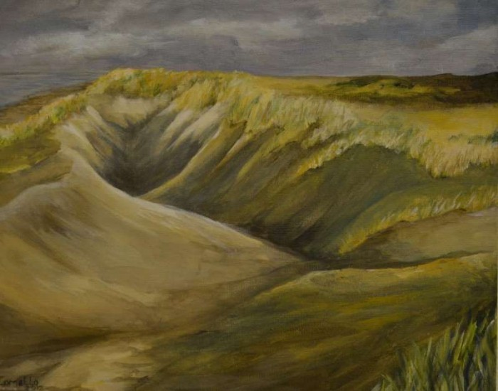2012, Duinen Ameland 40x50, Olieverf op waterbasis, J.Comello