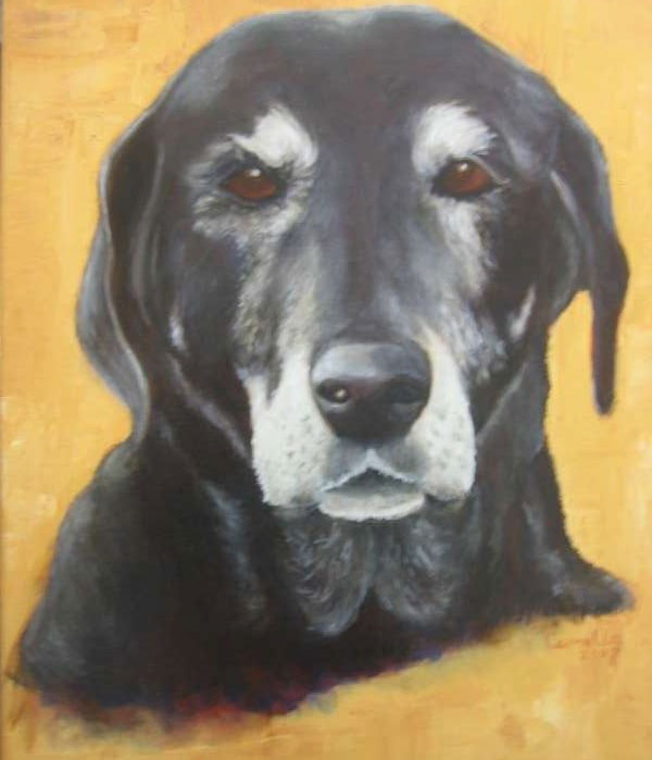 2008, Doedel, 40x50, olieverf, hondenportret J. Comello